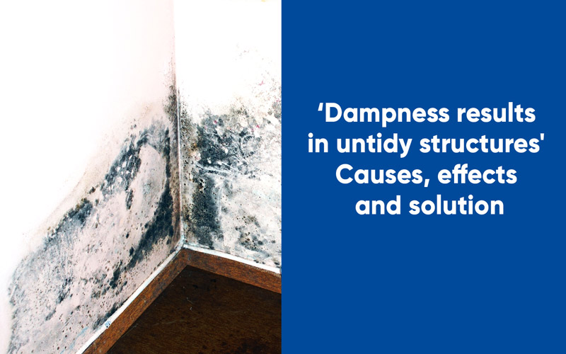 Dampness results in untidy structures- Causes, effects and solution
